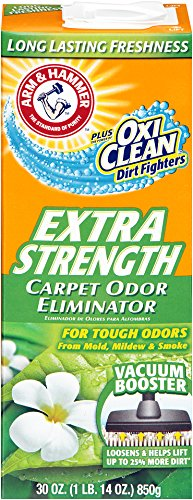 Top Carpet Deodorizers