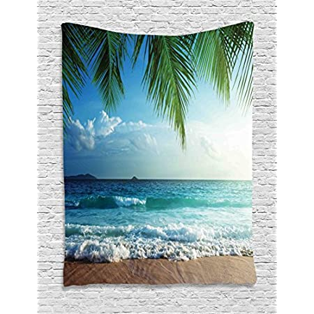 51s5LCe872L._SS450_ Beach Tapestries and Coastal Tapestries