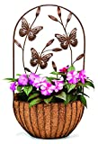 Cheap Deer Park Ironworks WB146 Park Ironworks Butterfly Wall Planter with Coco Liner