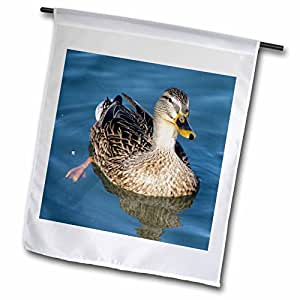 Cassie Peters Photography - Mallard Hen Photographed by Angelandspot - 18 x 27 inch Garden Flag (fl_6469_2)