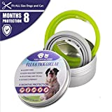 2 Pack Flea and Tick Control Adjustable Waterproof Collar Protect for Dogs and Cats - Last for 8 Months with Natural Plant Extracts Pet Treatment Prevention Fits All