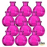 Glassnow C6545G07-N Ball Glass Bottle No Cork, 3.4oz, 12 Pieces, Fuchsia