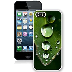 Falling Water Drop On Leaf (2) Hard Plastic iPhone 5 5S Protective Phone Case
