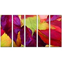 amazon com vibrant canvas prints