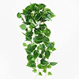 Luyue Artificial Hanging Plants Green Plastic Scindapsus Leaves Fake Ivy Vine Pack of 1 (Scindapsus Vine)
