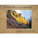 The Grand Mesa, Leslie Larkin, 1591520762