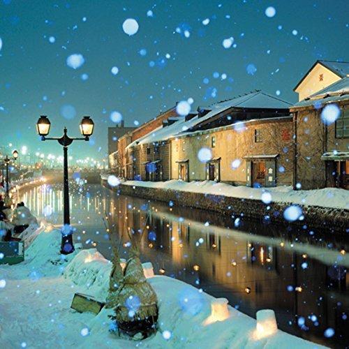 "Chamberart 500Piece Premium Jigsaw Puzzle ""A Scene Of The Snow Hokkaido"" A-5093"