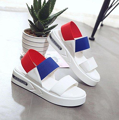 Zapatos de las sandalias del color del encanto femenino de los estudios plana salvaje Blue