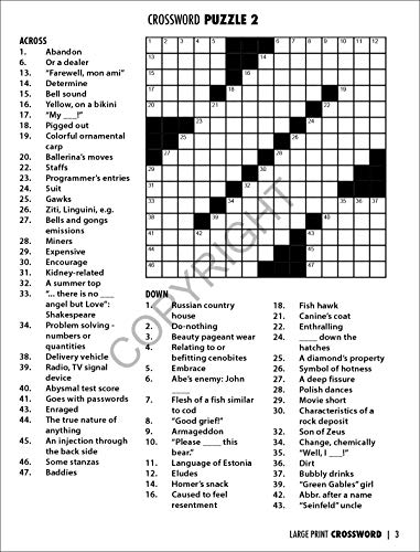 Safety Magnets Large Print Crossword Puzzle