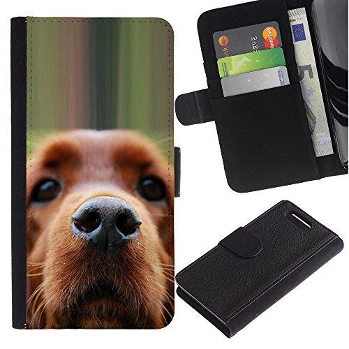 LASTONE PHONE CASE / Lujo Billetera de Cuero Caso del tirón Titular de la tarjeta Flip Carcasa Funda para Sony Xperia Z1 Compact D5503 / Golden Retriever Dog Muzzle Brown