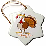 3dRose Dooni Designs More Random Cartoon Designs - Funny Turkey Day Survivor Turkey - 3 inch Snowflake Porcelain Ornament (orn_118711_1)