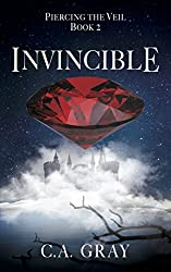 Invincible: Piercing the Veil, Book 2