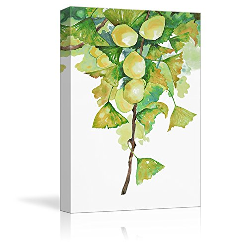 Green Gingko Leaves and Fruits Watercolor Painting Style Art Reproduction ation