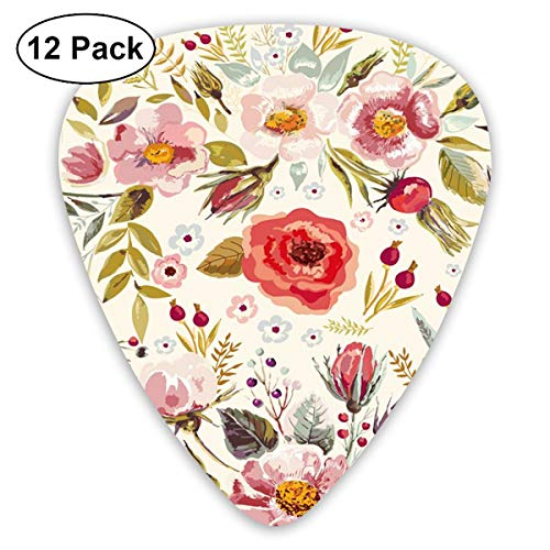 CNSHQL Vintage Hand Drawn Floral 12-Pack Classic Colorful Guitar Picks -Plectrums for Electric Guitar, Acoustic Guitar, Mandolin, and Bass