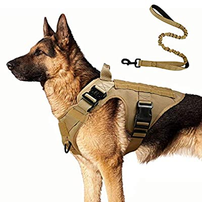 Rabbitgoo Tactical Dog Harness and Bungee Dog Leash Set for Large Medium Dogs, MOLLE Vest for Service & Training Military Dogs Adjustable Training Hunting Dog Tactical Vest with Handles & Metal Buckle