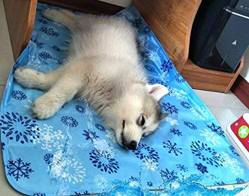 EFVGR Dog Mat Kennel Summer Cat Mat Large Dog Mat Sleeping Pad Resistance to Bite Pet Bed Ice Pad(M) for Cat Dog
