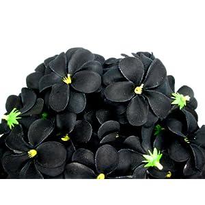 "(100) Black Hawaiian Plumeria Frangipani Silk Flower Heads - 3"" - Artificial Flowers Head Fabric Floral Supplies Wholesale Lot for Wedding Flowers Accessories Make Bridal Hair Clips Headbands Dress 50"