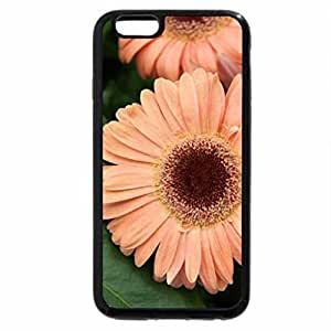 iPhone 6S / iPhone 6 Case (Black) Beautiful flowers from Victoria