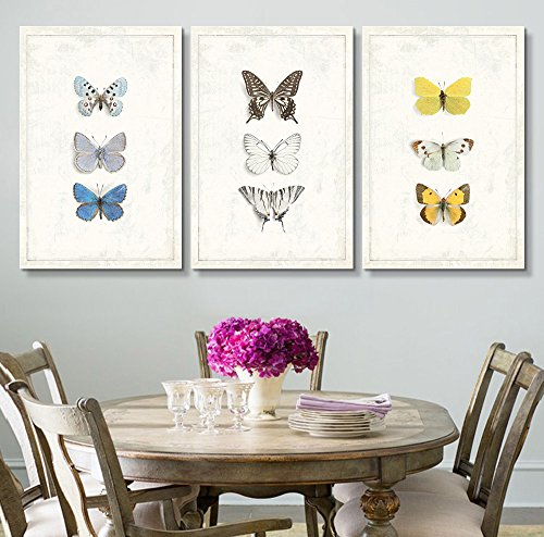 3 Panel Multiple Butterfly Species Artwork Series x 3 Panels