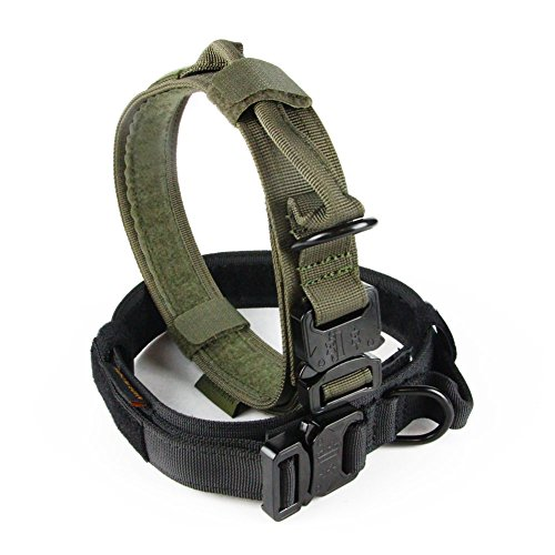 Tactical Dog Collar Amazon