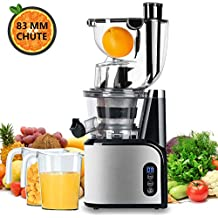 Aobosi Slow Masticating Juicer Extractor Compact Cold Press Juicer Machine with Portable Handle/Quiet Motor/Reverse Function/Juice Jug and Clean Brush for High Nutrient Fruit & Vegetable Juice (Updated -V2)