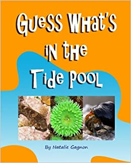 Book Guess What's in the Tide Pool
