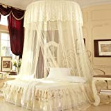 Palace Princess Dream,Double Suction Cups/Fashion,Ceiling Mosquito Nets/Fine Ceiling Dome Nets-D E