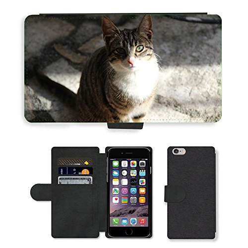 Just Phone Cases PU Leather Flip Custodia Protettiva Case Cover per // M00128562 Pussy Cat animaux féline // Apple iPhone 6 PLUS 5.5""