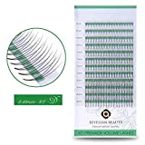 BEYELIAN Beauty Premade Volume Eyelash Extensions D Curl 0.10mm Pre made 3D Fans Lashes Individual Eyelashes for Volume Sets Glue Bonded Knot-free (9-14mm Mix Tray)