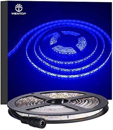 WenTop LEDテープライト 両面テープ SMD 3528防水 DC 12v 5M 300leds 60leds/m ブルーフレキシブルテープライティングテープライト、家、バー、レストラン装飾 - 電源アダプタ含まれません