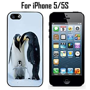 Cute King Penguin Animal Custom Case/ Cover/Skin *NEW* Case for Apple iPhone 5/5S - Black - Rubber Case (Ships from CA) Custom Protective Case , Design Case-ATT Verizon T-mobile Sprint ,Friendly Packaging - Slim Case