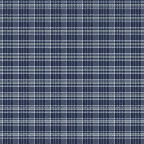 Marcus Fabrics Primo Plaid Flannel Blue Mini Check