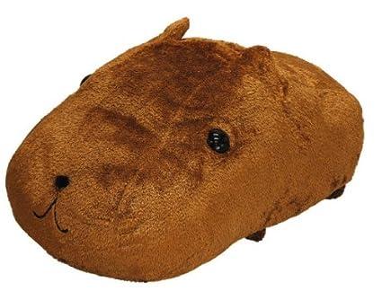 kapibara san
