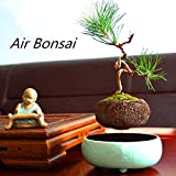 Japanese style Levitating Air Bonsai Pot - Magnetic Levitation Suspension flower (Green)