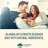 Genestra Brands - Can Albex 30X - Candida