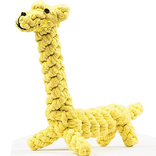 Durable Giraffe oneisall Dental Cleaning