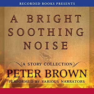 A Bright Soothing Noise Audiobook
