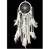 """Dream Catcher ~ Handmade Traditional Feather Wall Hanging Home Decoration Decor Ornament Craft (Green and Brown) 5.1"""" Diameter 19.6"""" Long"""