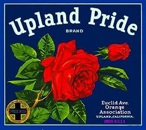Upland Pride Red Rose Flower Orange Citrus Fruit Crate Box Label Art Print