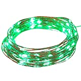 NEWSTYLE 33Ft 10M Copper LED Lights Strings 100 LEDs on Copper Wire 33ft LED Starry Light with 12v Power Adapter For Christmas Wedding and Party (Green)