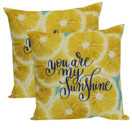 mainstays- Lemon and tealアウトドアToss Pillow – 2のセット B07FB6SSR8