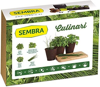 Sembra Big Kit Cultivo, 25.5x33.5x9 cm: Amazon.es: Jardín