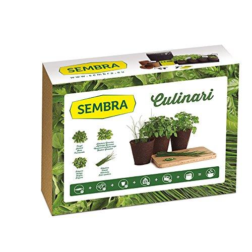 Sembra - Anzucht - Culinari