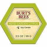 Burt's Bees Herb Garden Citrus Soy Candle, 3.5 Oz