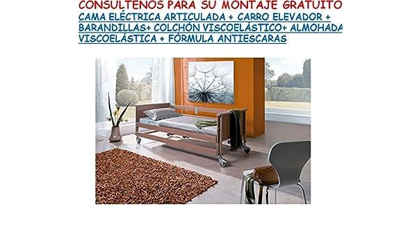 Ayudas Dinámicas Cama ELECTRICA ARTICULADA + Carro Elevador +BARRANDILLAS+ Almohada VISCOELÁSTICA + COLCHÓN VISCOELÁSTICO + Crema ANTIESCARAS DE Regalo: ...