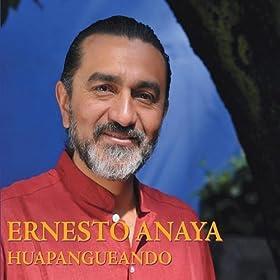 Amazon.com: Las Canastas: Juana Vargas Ernesto Anaya: MP3 Downloads