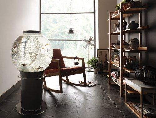 BiOrb Classic fish tank setup