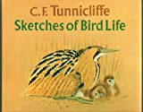 img - for C. F. Tunnicliffe: Sketches of Bird Life book / textbook / text book