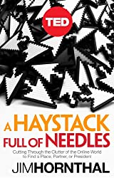 A Haystack Full of Needles: Cutting Through the Clutter of the Online World to Find a Place, Partner or President (Kindle Single) (TED Books)