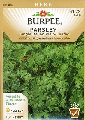 Burpee 66084 Herb Parsley, Single Italian Plain-Leafed Seed Packet